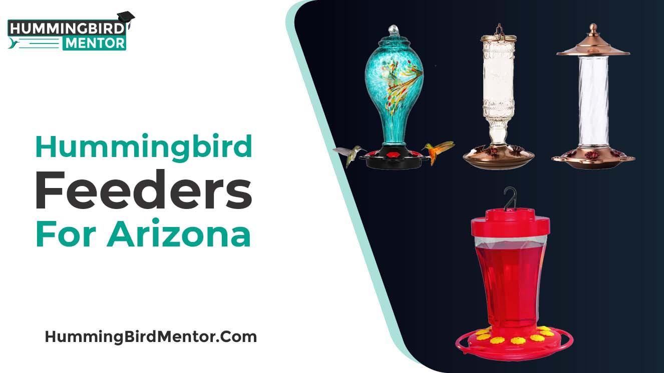 Best hummingbird feeders For Arizona 2021