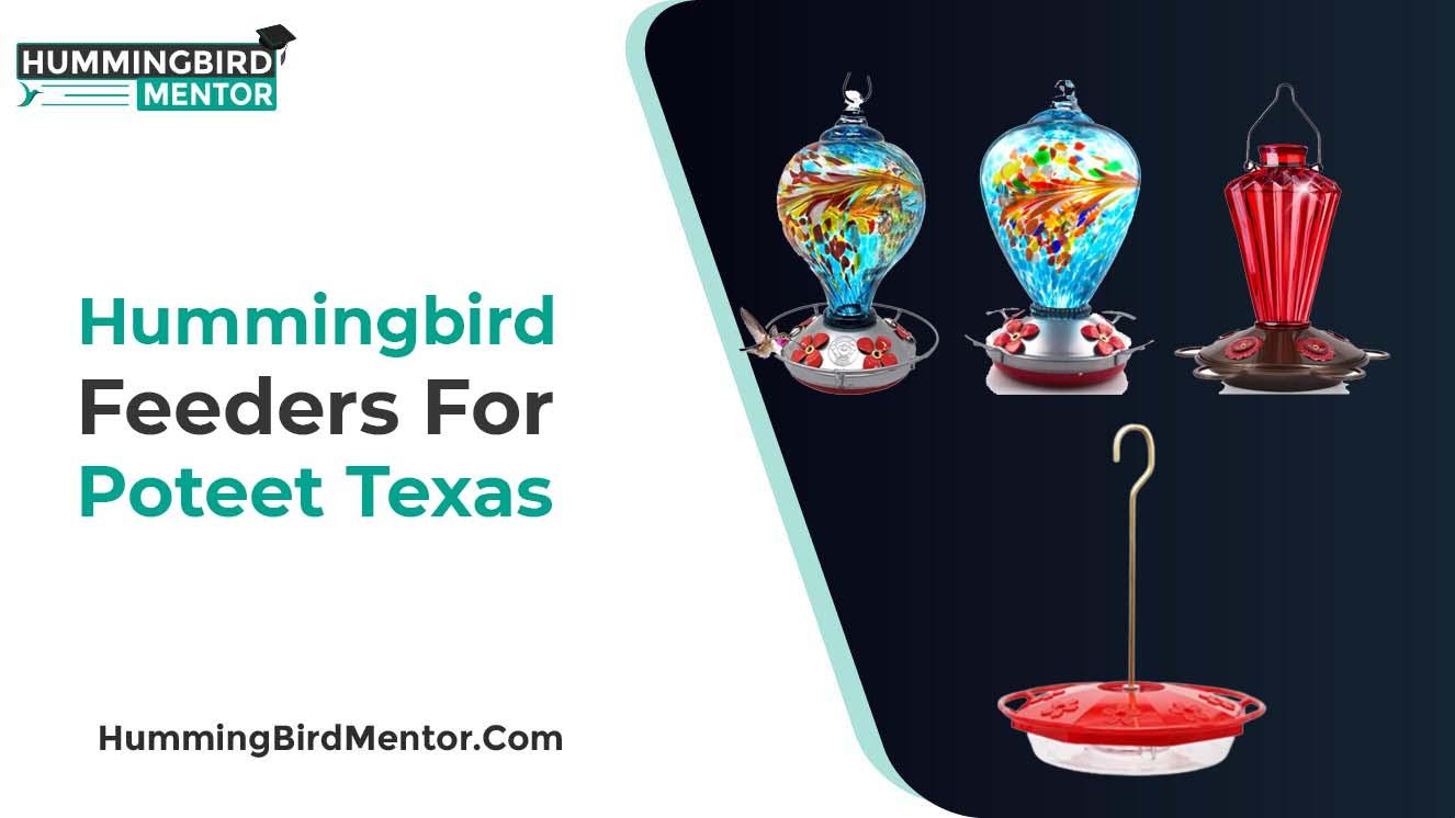 Best hummingbird feeders for poteet texas 2021