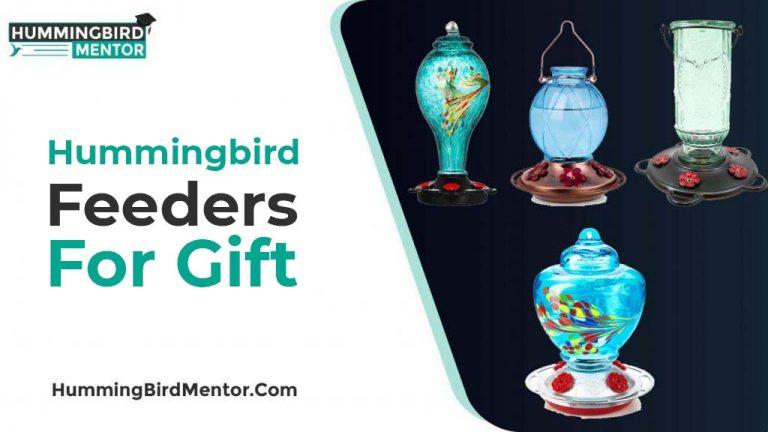 5 Best Hummingbird feeders Gift 2021 Reviewed by Hummingbird Mentor